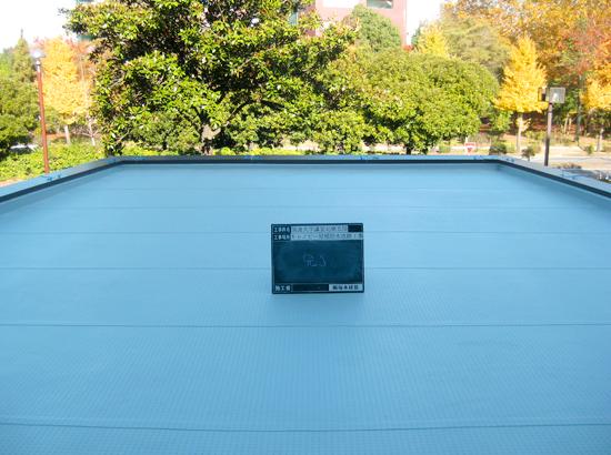 筑波大学様・講堂北側玄関 キャノピー屋根防水工事
